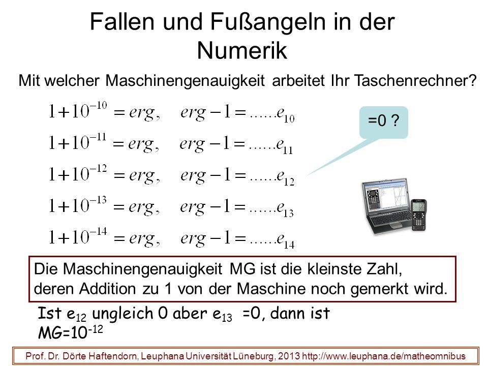 Fallen und Fußangeln in der Numerik Prof. Dr. Dörte Haftendorn, Leuphana Universität Lüneburg, 2013 http://www.leuphana.de/matheomnibus Mit welcher Ma