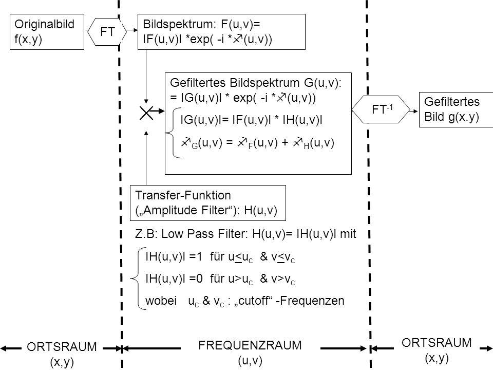 Sylvain Bonnet, Lehrstuhl für mathematische Geologie 28 Originalbild f(x,y) Bildspektrum: F(u,v)= IF(u,v)I *exp( -i * (u,v)) Transfer-Funktion (Amplit