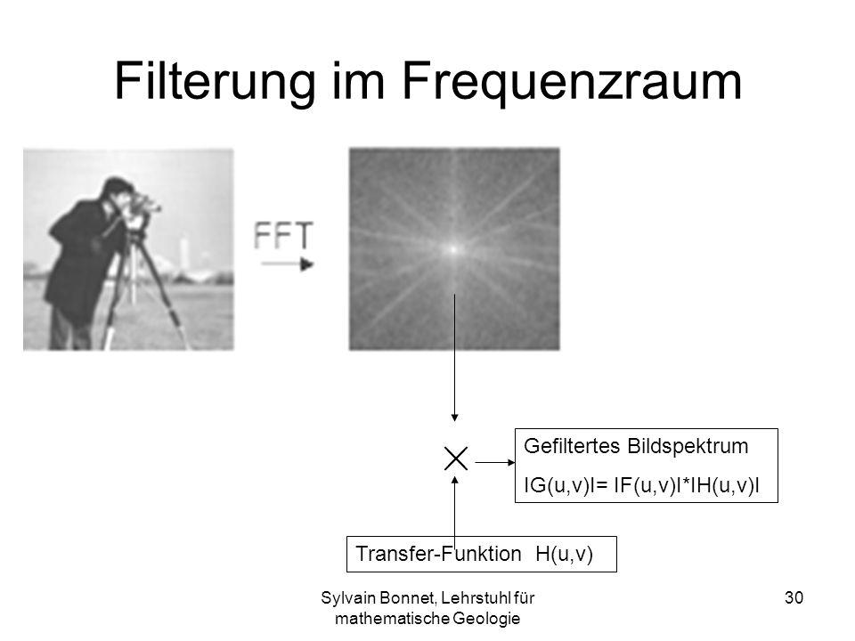 Sylvain Bonnet, Lehrstuhl für mathematische Geologie 30 Filterung im Frequenzraum Transfer-Funktion H(u,v) Gefiltertes Bildspektrum IG(u,v)I= IF(u,v)I