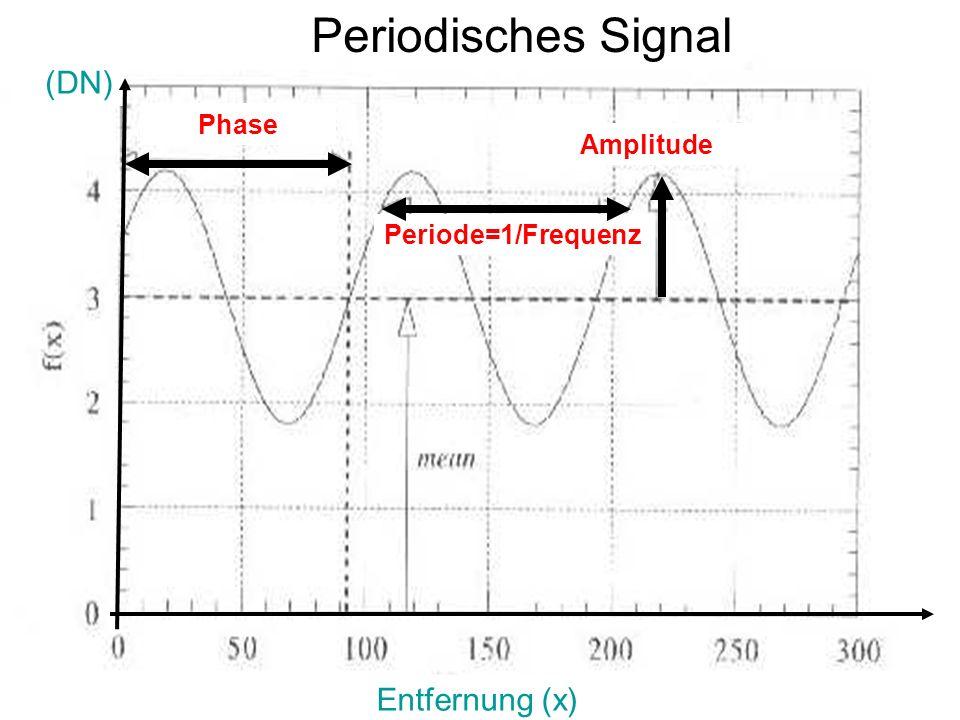 Sylvain Bonnet, Lehrstuhl für mathematische Geologie 6 (DN) Entfernung (x) Amplitude Periode=1/Frequenz Periodisches Signal Phase