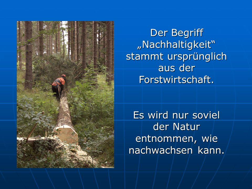 Der Begriff Nachhaltigkeit stammt ursprünglich aus der Forstwirtschaft. Es wird nur soviel der Natur entnommen, wie nachwachsen kann.