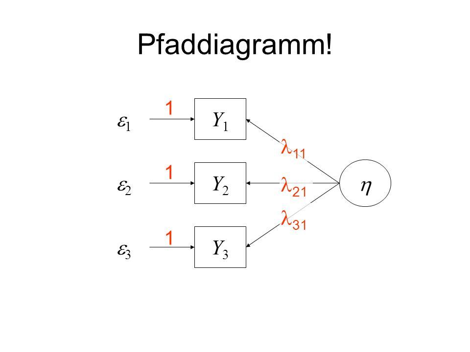 Pfaddiagramm! Y3Y3 Y2Y2 Y1Y1 1 2 3 1 1 1 11 21 31