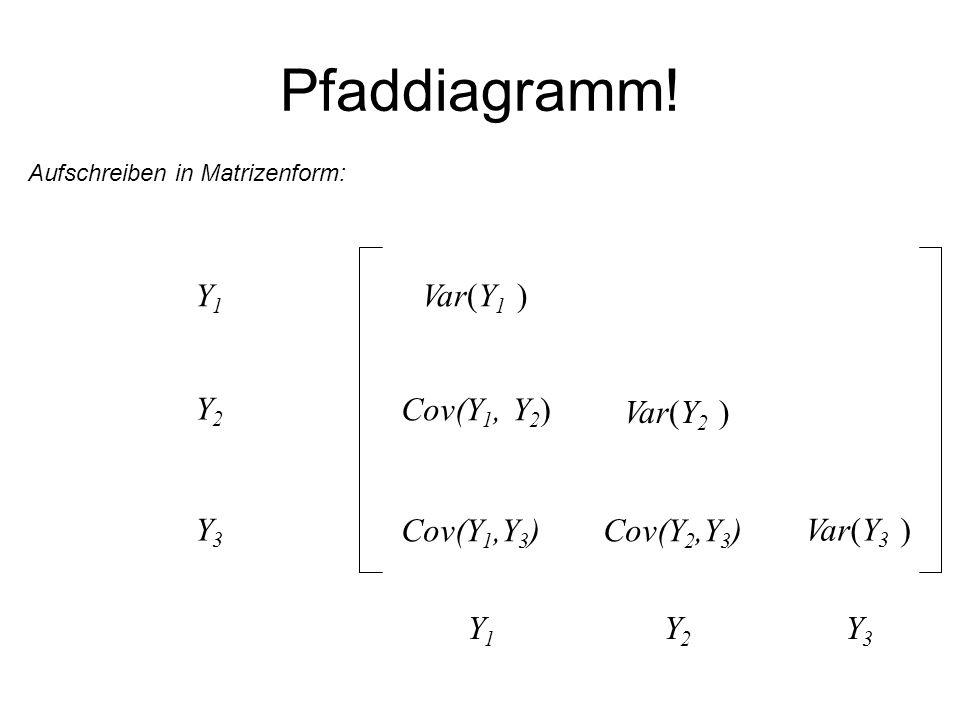 Pfaddiagramm! Aufschreiben in Matrizenform: Var(Y 1 ) Cov(Y 1, Y 2 ) Cov(Y 1,Y 3 ) Var(Y 2 ) Cov(Y 2,Y 3 ) Var(Y 3 ) Y1Y1 Y2Y2 Y3Y3 Y1Y1 Y2Y2 Y3Y3