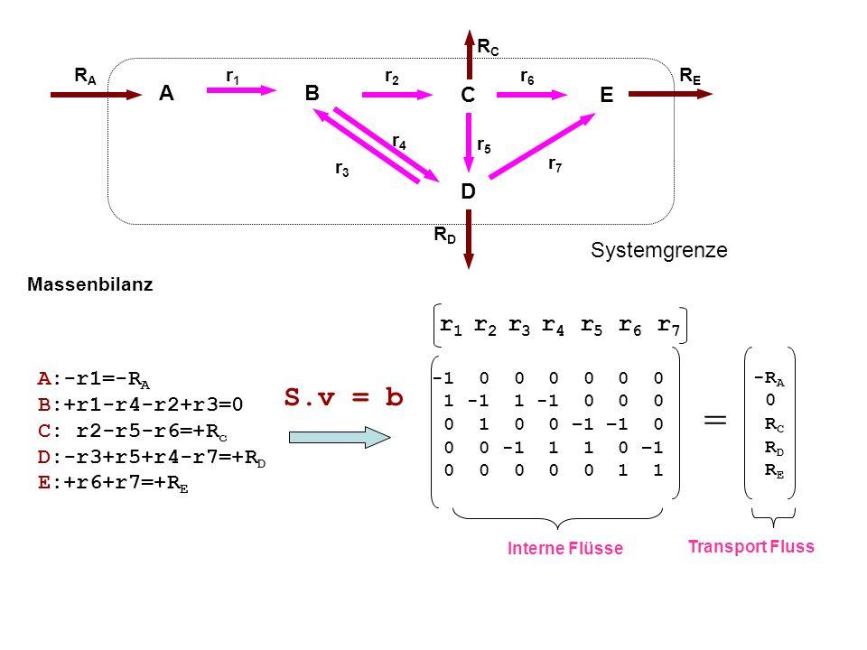 S.v = b A:-r1=-R A B:+r1-r4-r2+r3=0 C: r2-r5-r6=+R c D:-r3+r5+r4-r7=+R D E:+r6+r7=+R E Massenbilanz Interne Flüsse -1 0 0 0 0 0 0 1 -1 1 -1 0 0 0 0 1