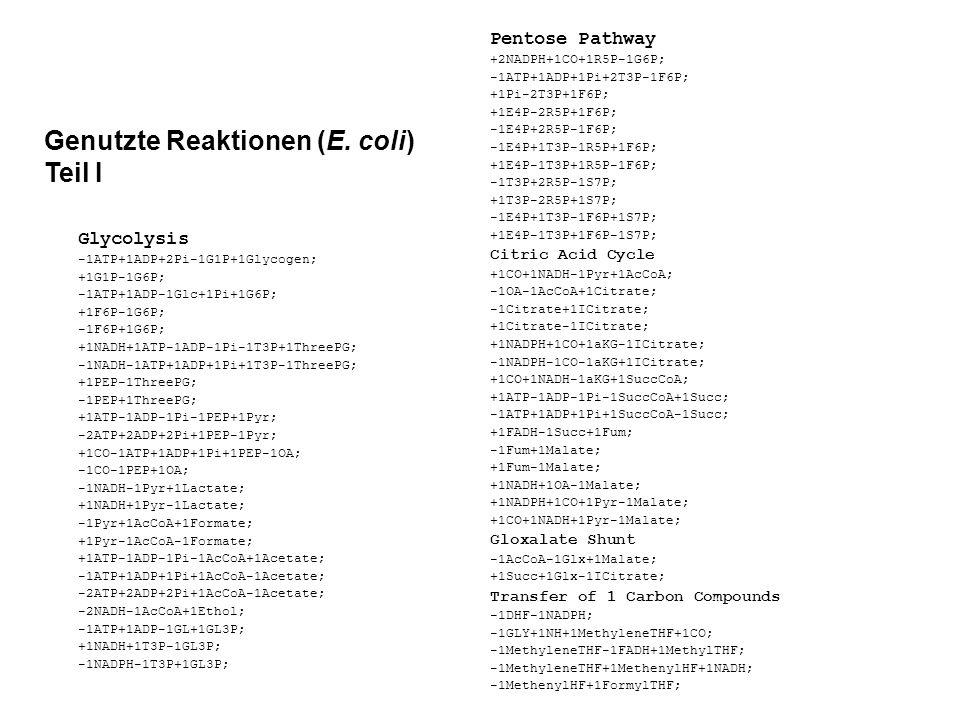 Genutzte Reaktionen (E. coli) Teil I Glycolysis -1ATP+1ADP+2Pi-1G1P+1Glycogen; +1G1P-1G6P; -1ATP+1ADP-1Glc+1Pi+1G6P; +1F6P-1G6P; -1F6P+1G6P; +1NADH+1A