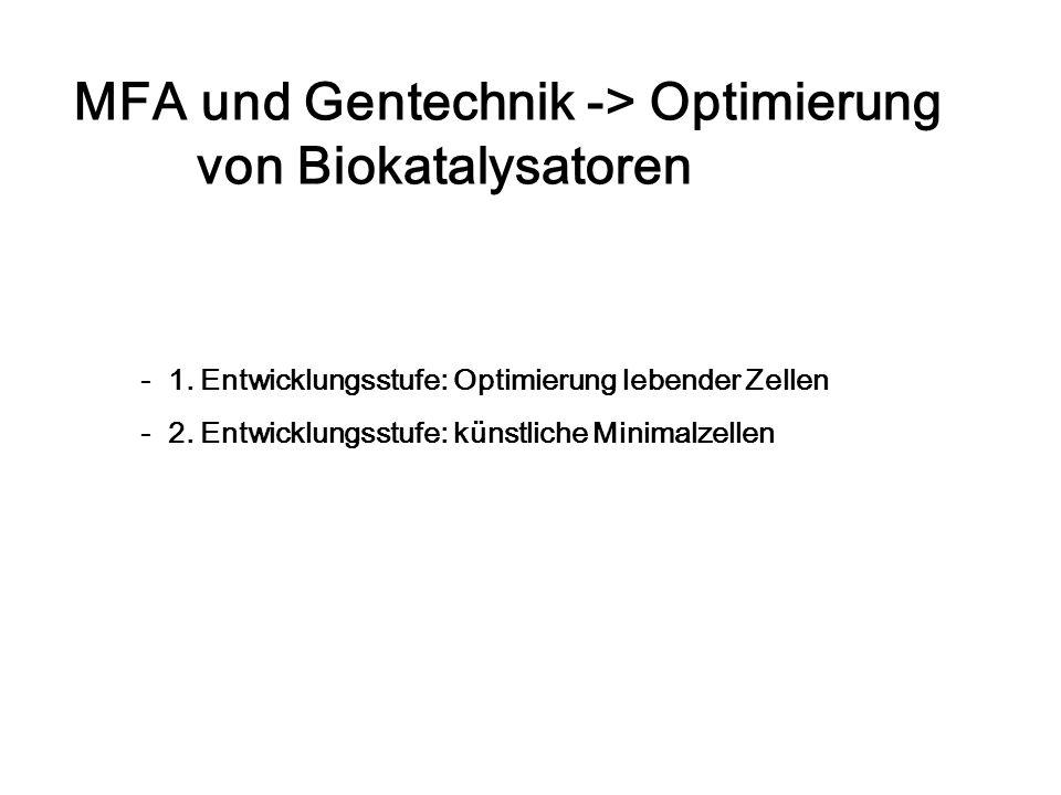 MFA und Gentechnik -> Optimierung von Biokatalysatoren - 1. Entwicklungsstufe: Optimierung lebender Zellen - 2. Entwicklungsstufe: künstliche Minimalz