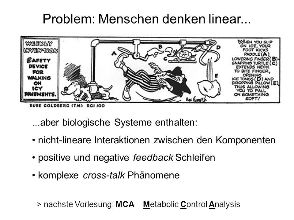 Problem: Menschen denken linear......aber biologische Systeme enthalten: nicht-lineare Interaktionen zwischen den Komponenten positive und negative fe