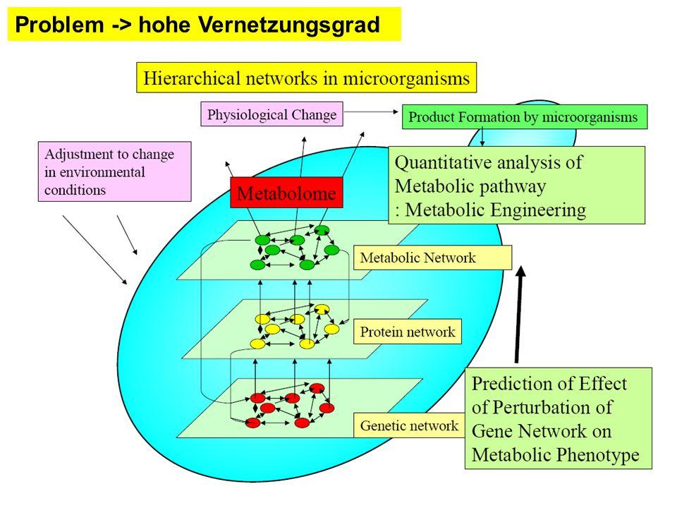 Empirische Modelle Energie für den Erhaltungsstoffwechsel: