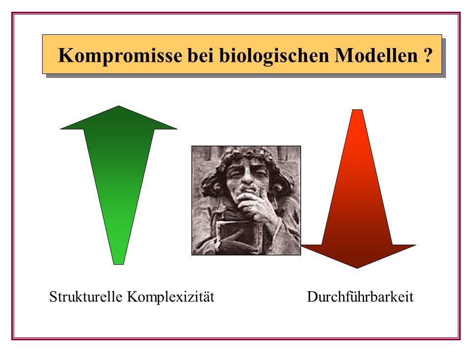Kompromisse bei biologischen Modellen ? Strukturelle KomplexizitätDurchführbarkeit