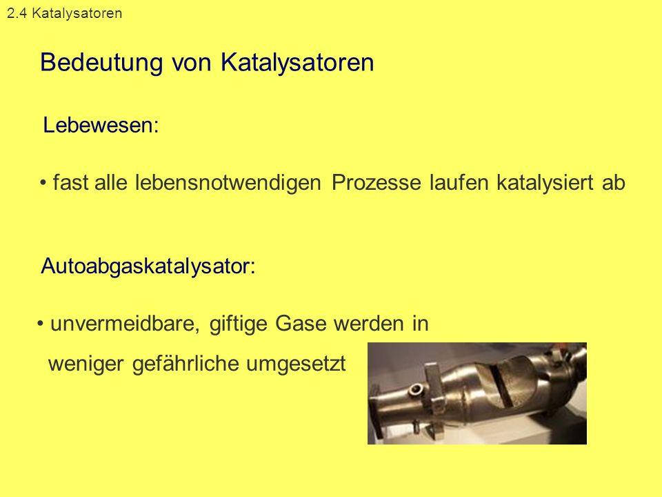 Bedeutung von Katalysatoren 2.4 Katalysatoren unvermeidbare, giftige Gase werden in weniger gefährliche umgesetzt Lebewesen: Autoabgaskatalysator: fas