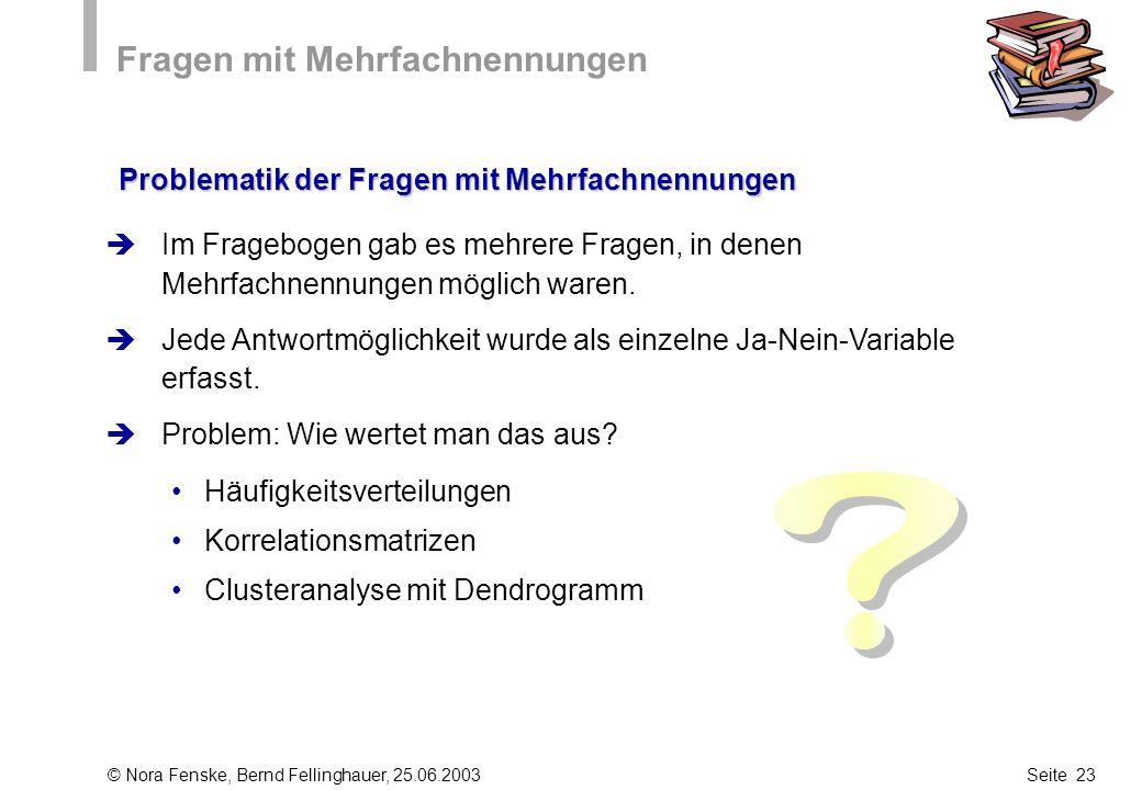 © Nora Fenske, Bernd Fellinghauer, 25.06.2003Seite 23 Fragen mit Mehrfachnennungen Im Fragebogen gab es mehrere Fragen, in denen Mehrfachnennungen mög