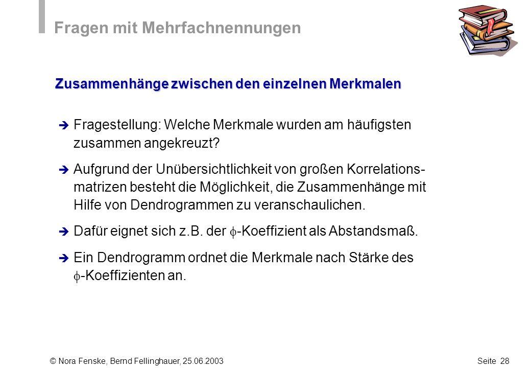 © Nora Fenske, Bernd Fellinghauer, 25.06.2003Seite 28 Fragen mit Mehrfachnennungen Zusammenhänge zwischen den einzelnen Merkmalen Fragestellung: Welch