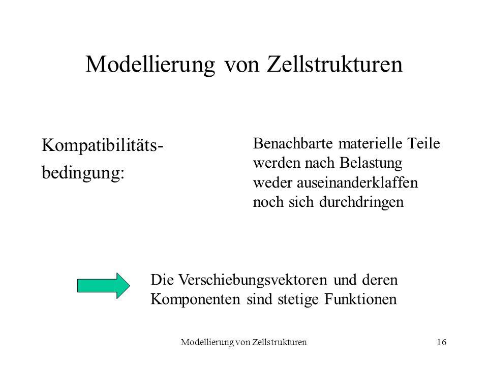 Modellierung von Zellstrukturen16 Modellierung von Zellstrukturen Kompatibilitäts- bedingung: Benachbarte materielle Teile werden nach Belastung weder
