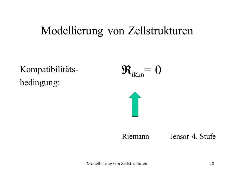 Modellierung von Zellstrukturen20 Modellierung von Zellstrukturen Kompatibilitäts- bedingung: iklm = 0 RiemannTensor 4. Stufe