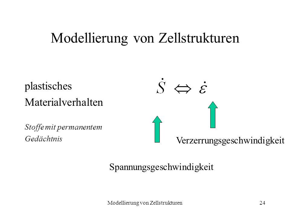 Modellierung von Zellstrukturen24 Modellierung von Zellstrukturen plastisches Materialverhalten Stoffe mit permanentem Gedächtnis Spannungsgeschwindig