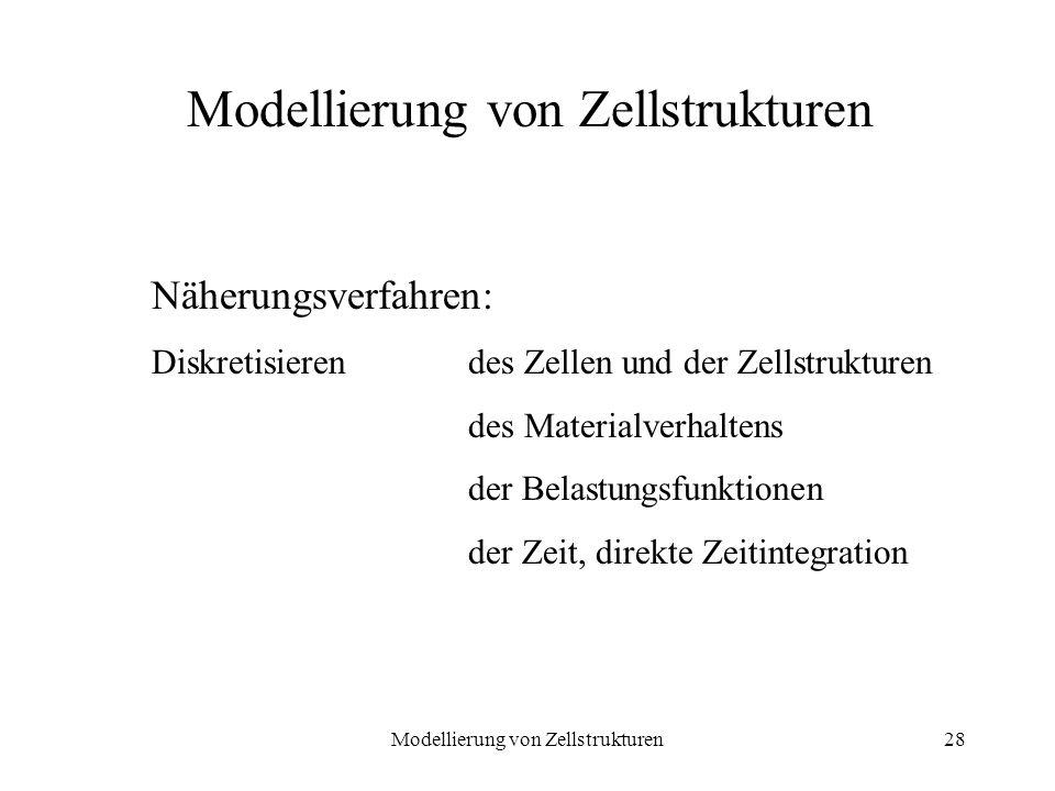 Modellierung von Zellstrukturen28 Modellierung von Zellstrukturen Näherungsverfahren: Diskretisieren des Zellen und der Zellstrukturen des Materialver