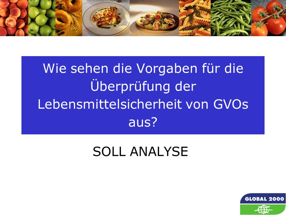 12 Wie sehen die Vorgaben für die Überprüfung der Lebensmittelsicherheit von GVOs aus? SOLL ANALYSE