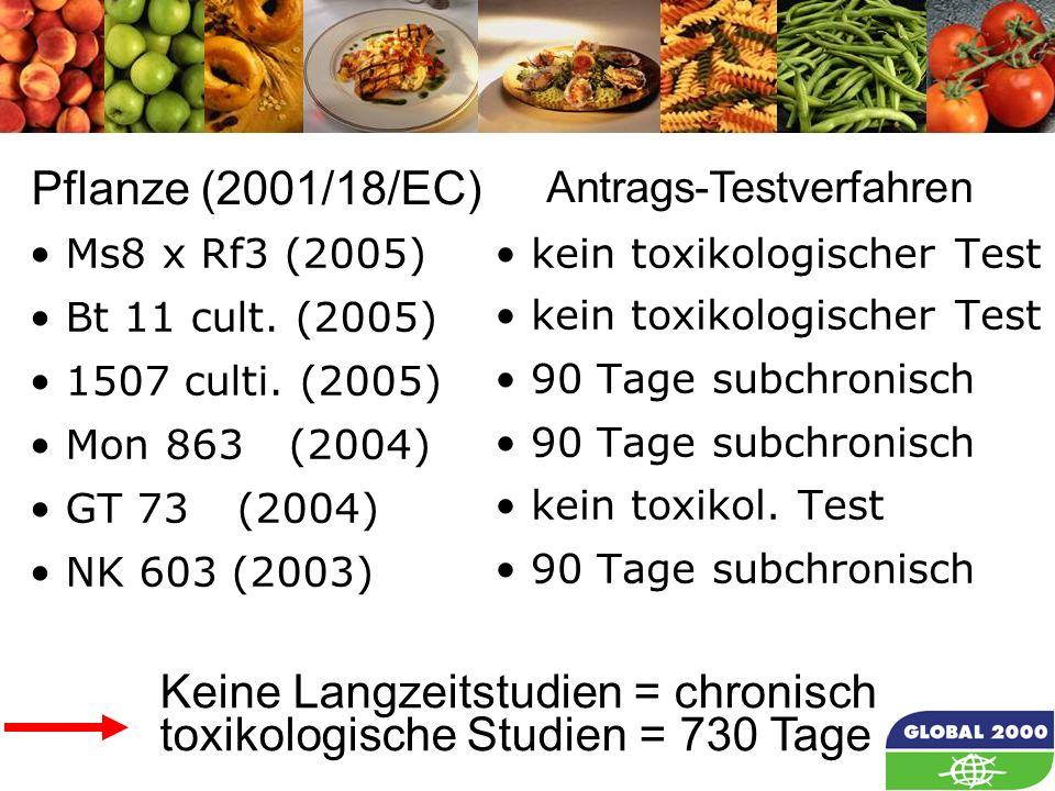 19 Ms8 x Rf3 (2005) Bt 11 cult. (2005) 1507 culti. (2005) Mon 863(2004) GT 73(2004) NK 603 (2003) kein toxikologischer Test 90 Tage subchronisch kein