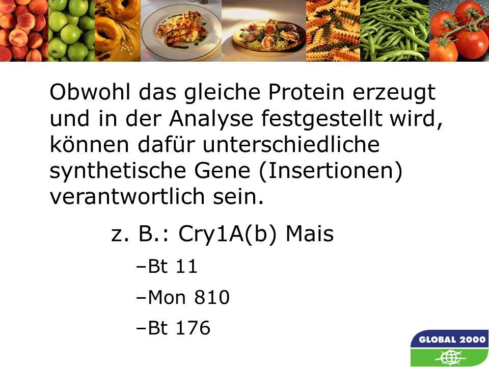 30 Obwohl das gleiche Protein erzeugt und in der Analyse festgestellt wird, können dafür unterschiedliche synthetische Gene (Insertionen) verantwortli