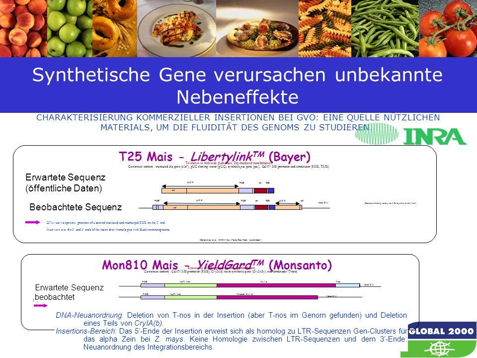 37 Synthetische Gene verursachen unbekannte Nebeneffekte CHARAKTERISIERUNG KOMMERZIELLER INSERTIONEN BEI GVO: EINE QUELLE NÜTZLICHEN MATERIALS, UM DIE
