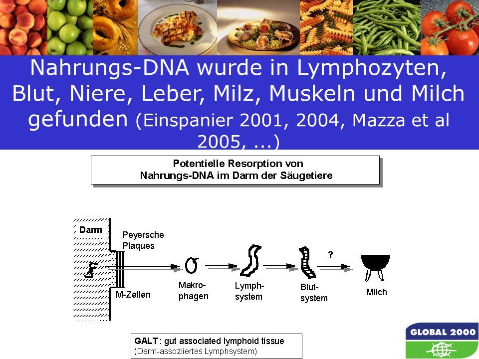 50 Nahrungs-DNA wurde in Lymphozyten, Blut, Niere, Leber, Milz, Muskeln und Milch gefunden (Einspanier 2001, 2004, Mazza et al 2005,...)
