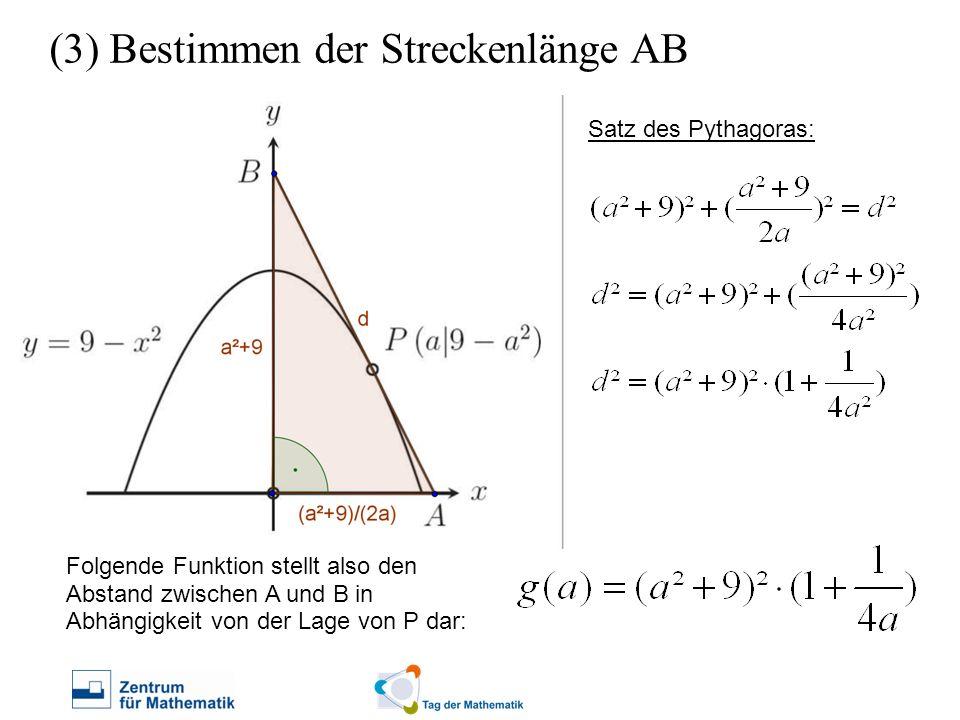 (3) Bestimmen der Streckenlänge AB Satz des Pythagoras: Folgende Funktion stellt also den Abstand zwischen A und B in Abhängigkeit von der Lage von P
