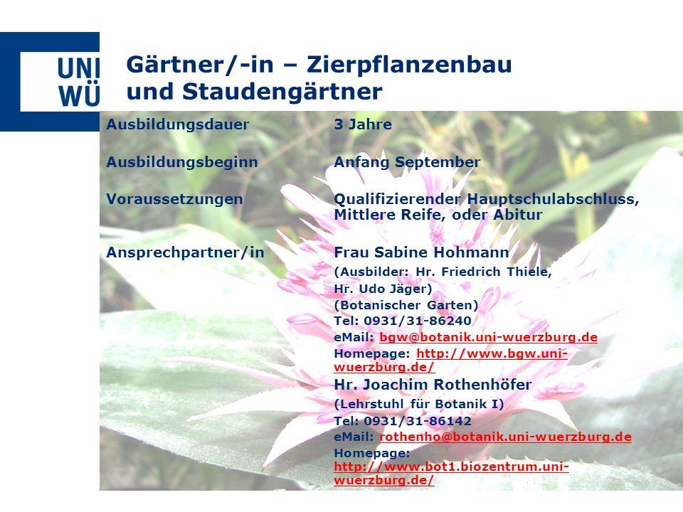 Gärtner/-in – Zierpflanzenbau und Staudengärtner Ausbildungsdauer3 Jahre AusbildungsbeginnAnfang September VoraussetzungenQualifizierender Hauptschula
