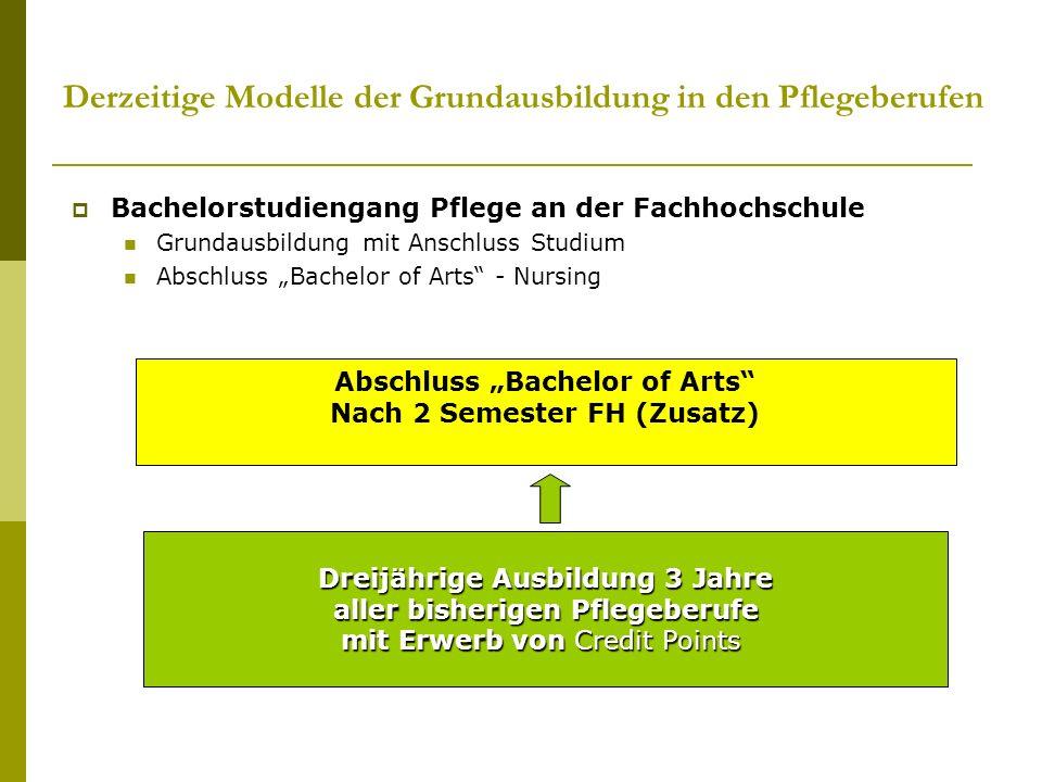Derzeitige Modelle der Grundausbildung in den Pflegeberufen Bachelorstudiengang Pflege an der Fachhochschule Grundausbildung mit Anschluss Studium Abs