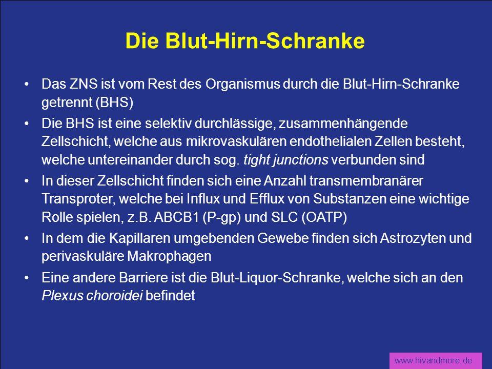 www.hivandmore.de Die Blut-Hirn-Schranke Das ZNS ist vom Rest des Organismus durch die Blut-Hirn-Schranke getrennt (BHS) Die BHS ist eine selektiv dur