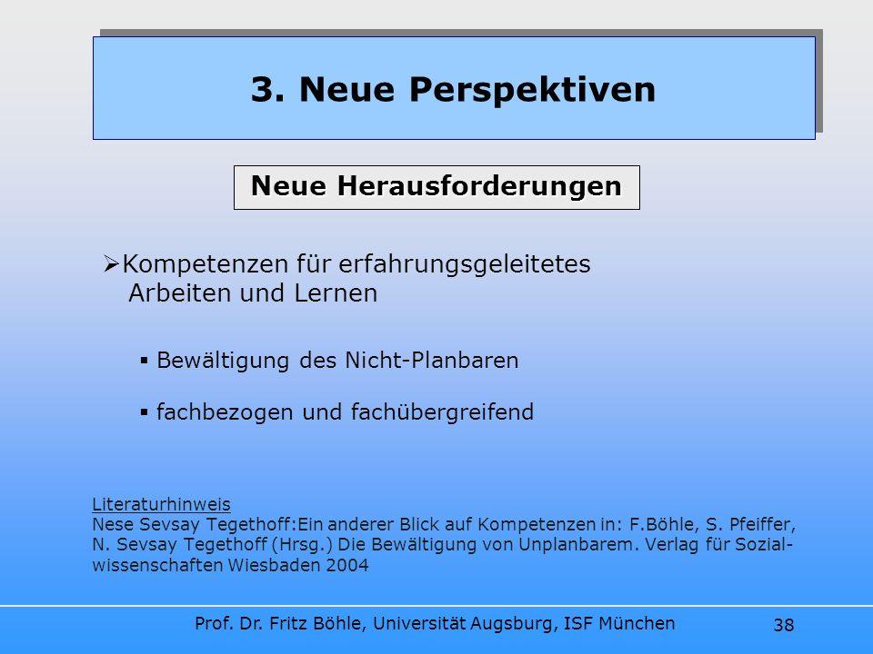 Prof. Dr. Fritz Böhle, Universität Augsburg, ISF München 38 Literaturhinweis Nese Sevsay Tegethoff:Ein anderer Blick auf Kompetenzen in: F.Böhle, S. P