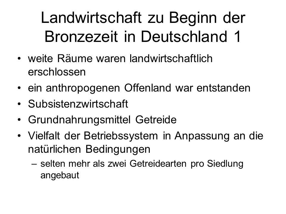 Landwirtschaft zu Beginn der Bronzezeit in Deutschland 1 weite Räume waren landwirtschaftlich erschlossen ein anthropogenen Offenland war entstanden S