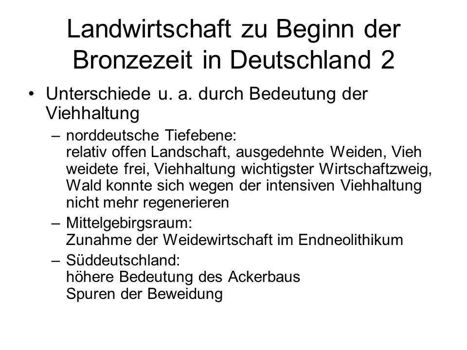 Landwirtschaft zu Beginn der Bronzezeit in Deutschland 2 Unterschiede u. a. durch Bedeutung der Viehhaltung –norddeutsche Tiefebene: relativ offen Lan