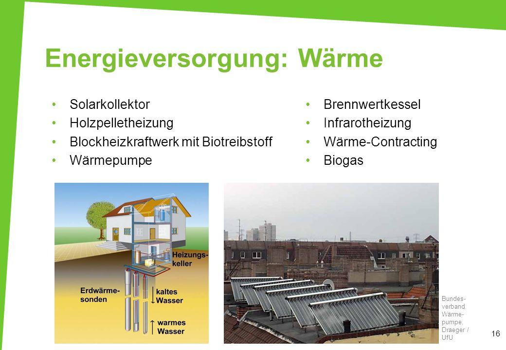Energieversorgung: Wärme Solarkollektor Holzpelletheizung Blockheizkraftwerk mit Biotreibstoff Wärmepumpe Brennwertkessel Infrarotheizung Wärme-Contra