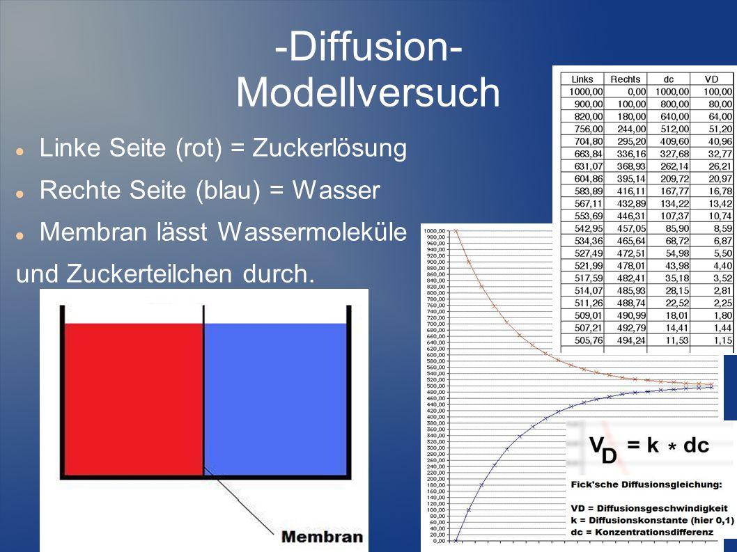 -Diffusion- Modellversuch Linke Seite (rot) = Zuckerlösung Rechte Seite (blau) = Wasser Membran lässt Wassermoleküle und Zuckerteilchen durch.