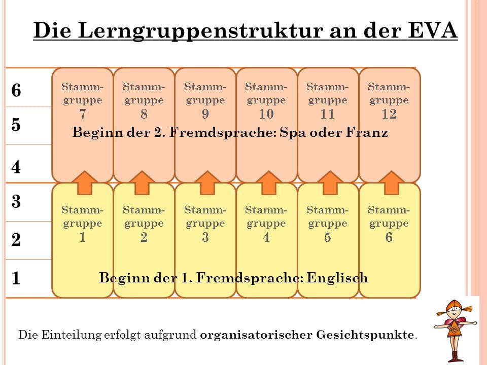 Die Lerngruppenstruktur an der EVA 1 2 3 4 5 6 Stamm- gruppe 1 Die Einteilung erfolgt aufgrund organisatorischer Gesichtspunkte. Stamm- gruppe 2 Stamm