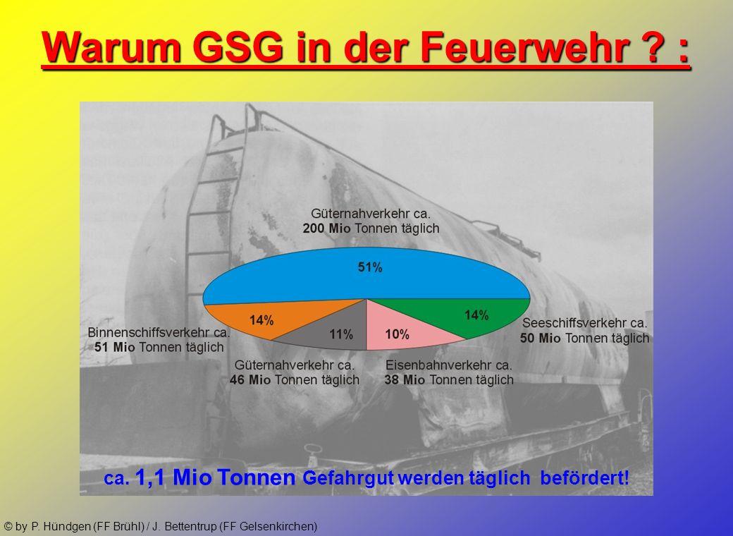 © by P. Hündgen (FF Brühl) / J. Bettentrup (FF Gelsenkirchen) Gliederung: 1. Einleitung und Einsatzbeispiele 2. Zielsetzung der GSG-Ausbildung im Tm-B