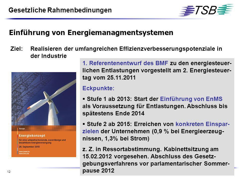 12 Ziel:Realisieren der umfangreichen Effizienzverbesserungspotenziale in der Industrie Ab 2013 werden Steuerermäßigungen im Bereich der Energie- und