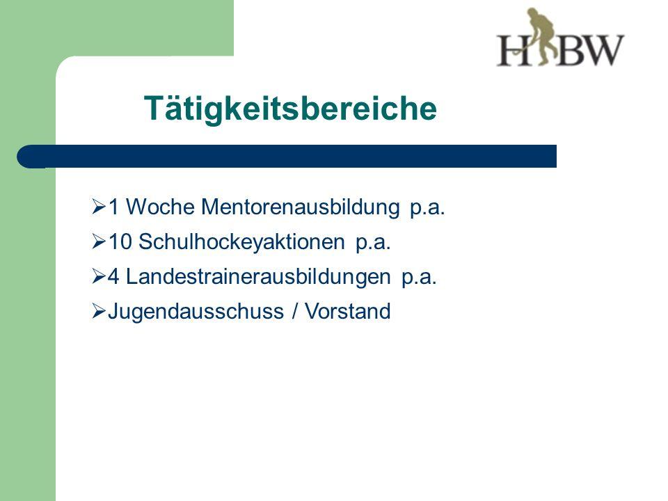 Tätigkeitsbereiche 1 Woche Mentorenausbildung p.a.