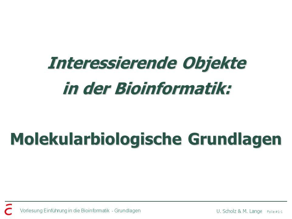 Vorlesung Einführung in die Bioinformatik -Grundlagen U. Scholz & M. Lange Folie #1-1 Interessierende Objekte in der Bioinformatik: Molekularbiologisc