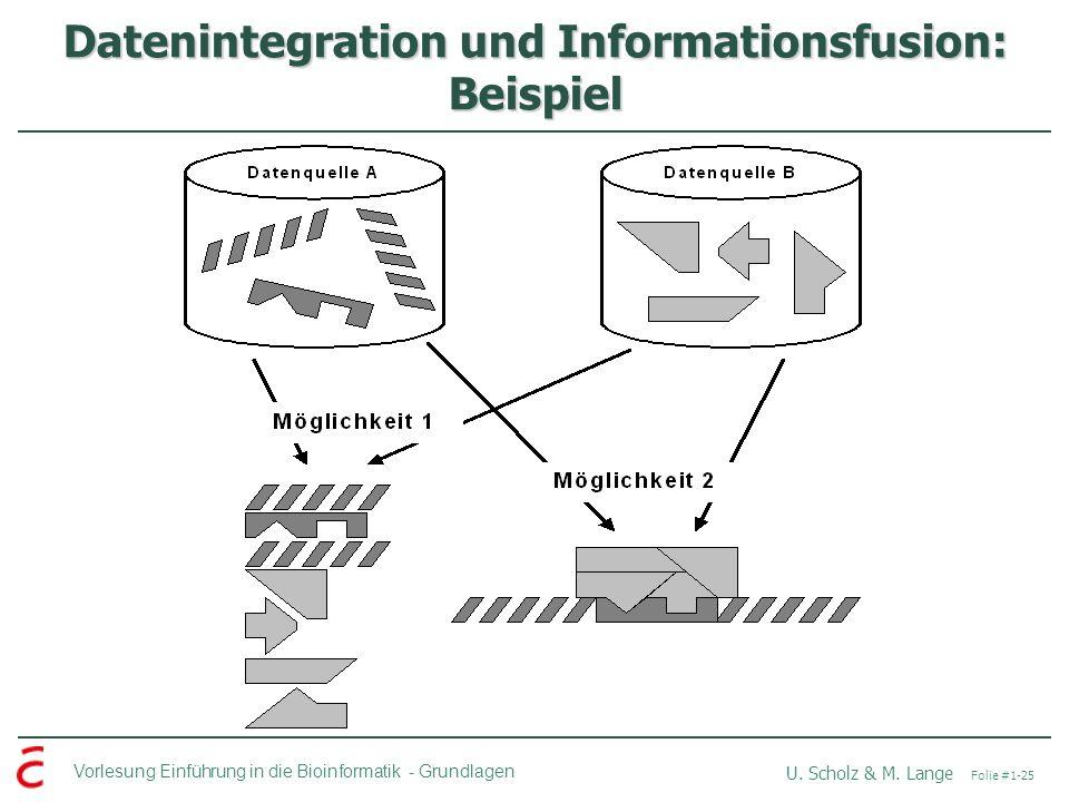Vorlesung Einführung in die Bioinformatik -Grundlagen U. Scholz & M. Lange Folie #1-25 Datenintegration und Informationsfusion: Beispiel