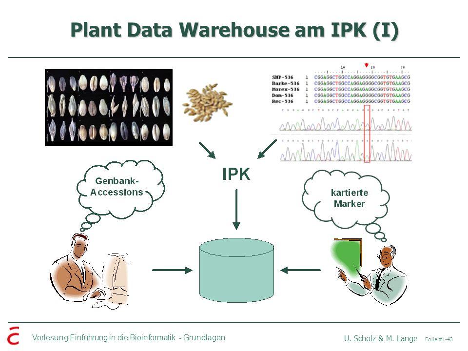 Vorlesung Einführung in die Bioinformatik -Grundlagen U. Scholz & M. Lange Folie #1-43 Plant Data Warehouse am IPK (I)