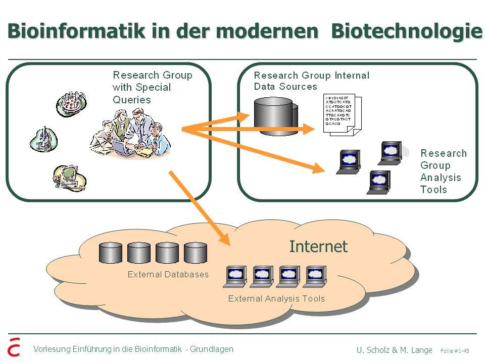 Vorlesung Einführung in die Bioinformatik -Grundlagen U. Scholz & M. Lange Folie #1-45 Bioinformatik in der modernen Biotechnologie Internet
