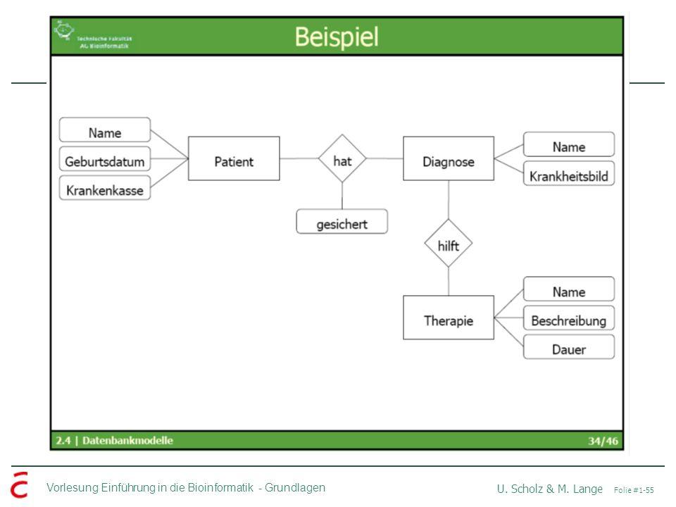 Vorlesung Einführung in die Bioinformatik -Grundlagen U. Scholz & M. Lange Folie #1-55