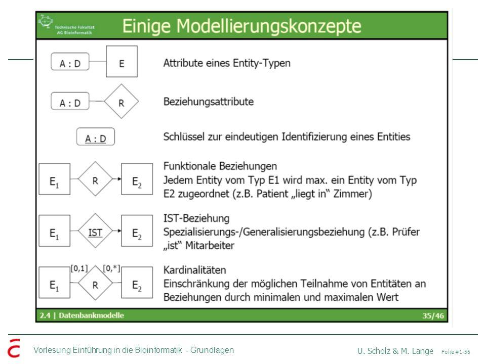 Vorlesung Einführung in die Bioinformatik -Grundlagen U. Scholz & M. Lange Folie #1-56