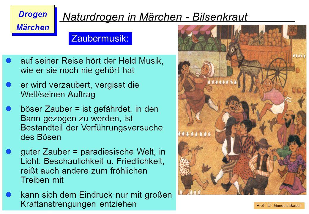 Prof. Dr. Gundula Barsch Drogen Märchen Naturdrogen in Märchen - Bilsenkraut auf seiner Reise hört der Held Musik, wie er sie noch nie gehört hat er w