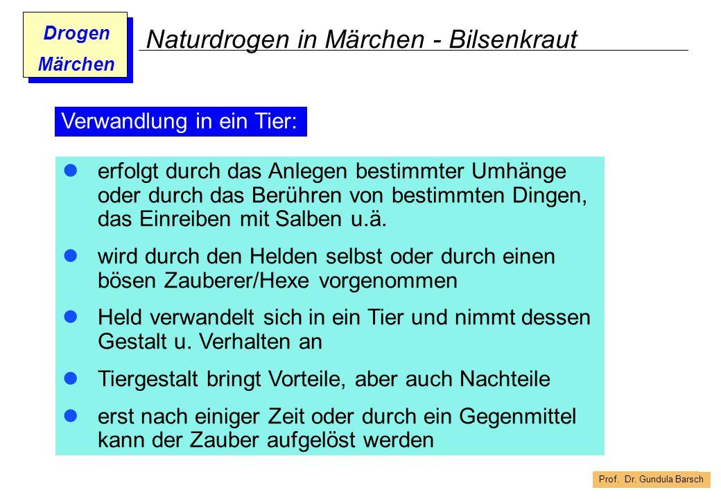 Prof. Dr. Gundula Barsch Drogen Märchen Naturdrogen in Märchen - Bilsenkraut erfolgt durch das Anlegen bestimmter Umhänge oder durch das Berühren von