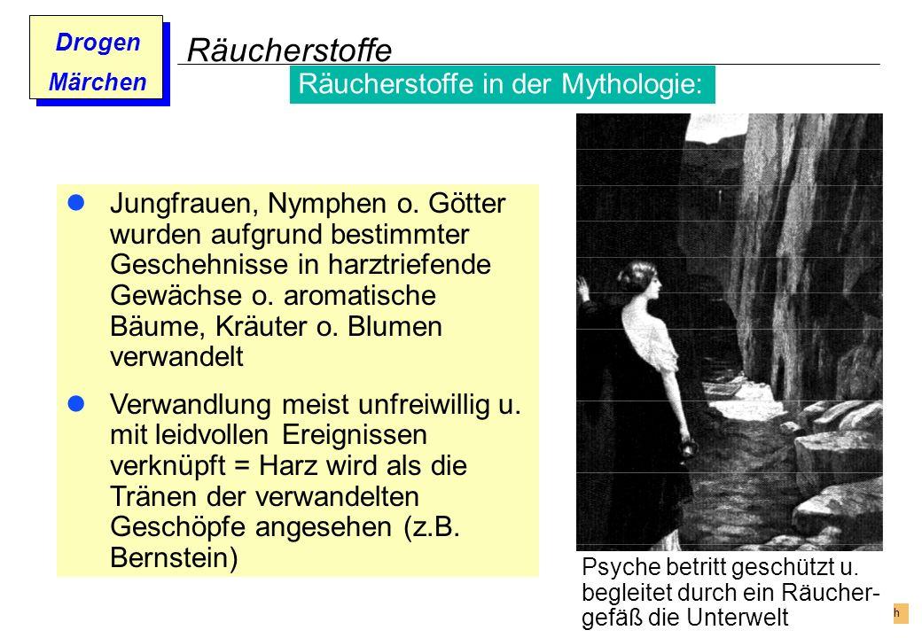 Prof. Dr. Gundula Barsch Drogen Märchen Räucherstoffe Jungfrauen, Nymphen o. Götter wurden aufgrund bestimmter Geschehnisse in harztriefende Gewächse