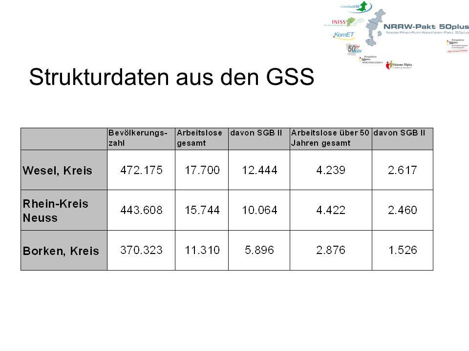 Strukturdaten aus den GSS