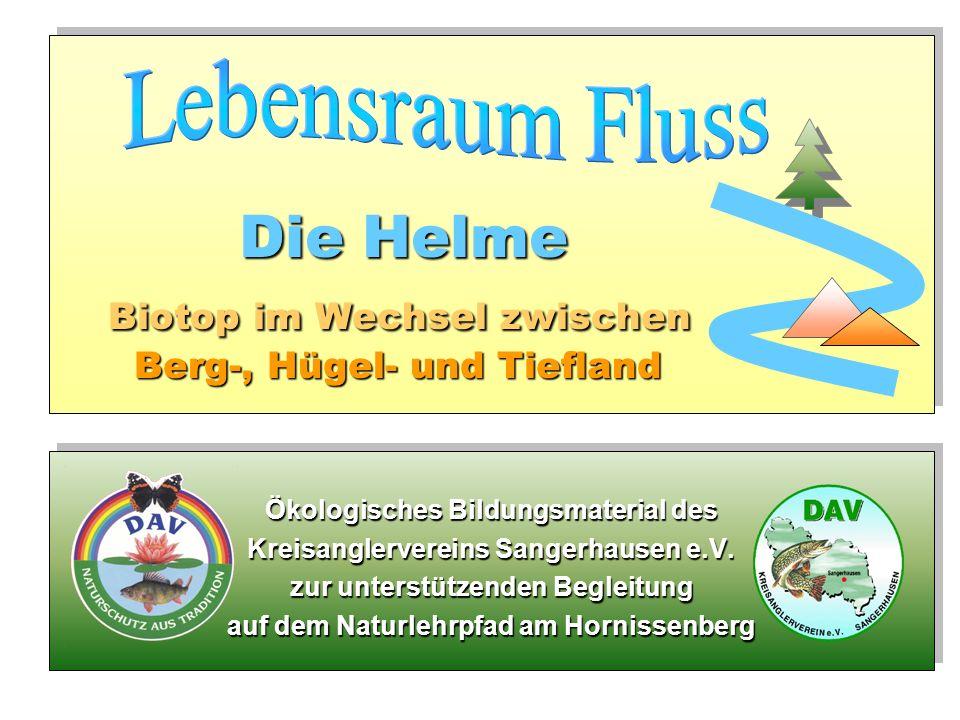 Die Helme Biotop im Wechsel zwischen Berg-, Hügel- und Tiefland D ie Helme Biotop im Wechsel zwischen Berg-, Hügel- und Tiefland Ökologisches Bildungs
