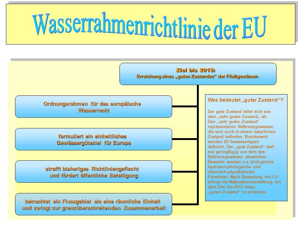 Ziel bis 2015: Erreichung eines guten Zustandes der Fließgewässer. Ordnungsrahmen für das europäische Wasserrecht formuliert ein einheitliches Gewässe